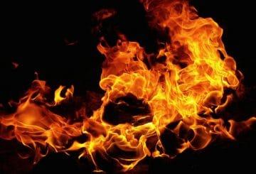 Ildebrand